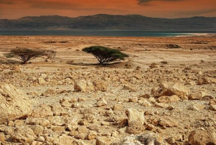 desert-judea